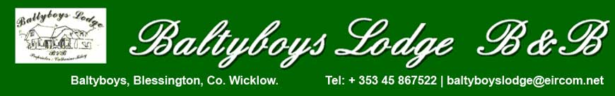 Baltyboys Lodge telephone +353 45 867522